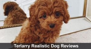 Terlarry Realistic Dog Reviews 2020