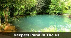Deepest Pond In The Us 2021