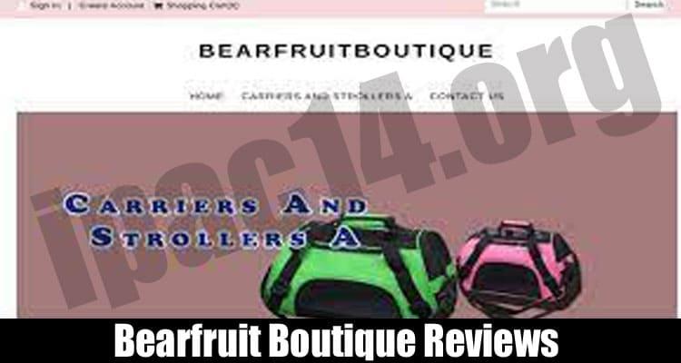 Bearfruit Boutique Reviews
